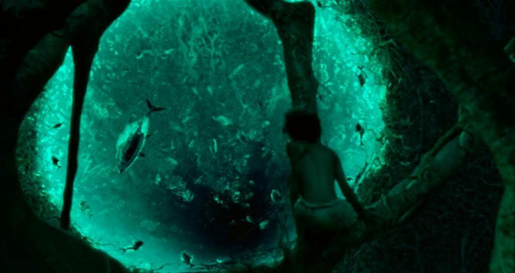 Pi si accorge che l'acqua dello stagno dell'isola dei suricati decompone tutto quello che c'è al suo interno.